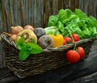 diy garden ideas on a budget