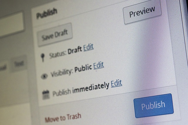 Wordpress publish button