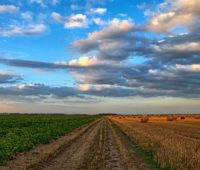 Nature and agriculture